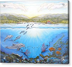 Catalina Island California Acrylic Print by Jerome Stumphauzer