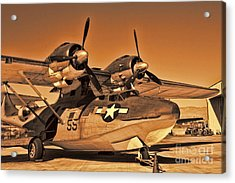 Catalina Acrylic Print by Tommy Anderson