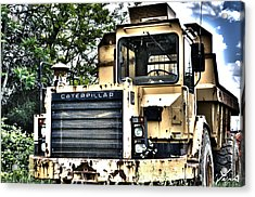Caterpillar's Front Acrylic Print by Shane York