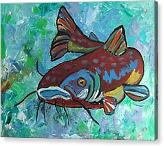 Catfish Acrylic Print by Krista Ouellette