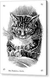 Cat's Whiskers, Conceptual Artwork Acrylic Print by Bill Sanderson
