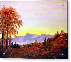 Catskills Acrylic Print by Phil Burton