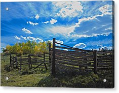 Cattle Chute And Corral Acrylic Print by Stephen  Johnson