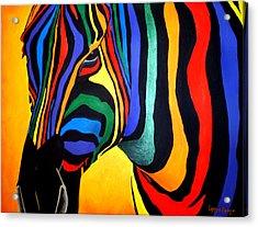 Cavallo Di Colore Acrylic Print by Lynsie Petig