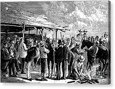 Cavalry Horses, 1876 Acrylic Print by Granger