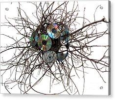 Cd Virus Acrylic Print by Adam Long