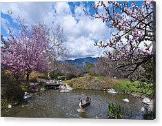Celebrating Spring Acrylic Print by Mike Herdering