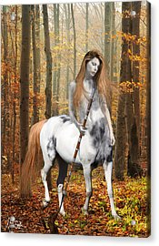 Centaur Series Autumn Walk Acrylic Print by Nikki Marie Smith