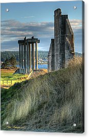 Central Meadow Ruins Acrylic Print by Chris Anderson
