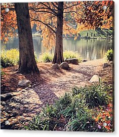 Central Park Early Morning Acrylic Print