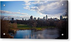 Central Park Acrylic Print by Steven Gray