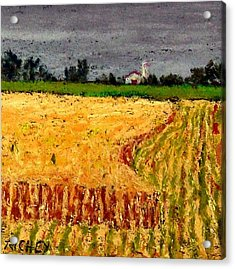 Central Pennsylvania Summer Wheat Acrylic Print by Bob Richey