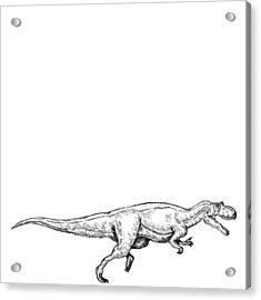 Ceratosaurus - Dinosaur Acrylic Print by Karl Addison