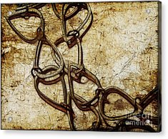 Chain Links Acrylic Print by Judi Bagwell