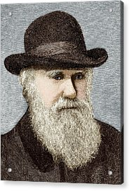 Charles Darwin, British Naturalist Acrylic Print by Sheila Terry