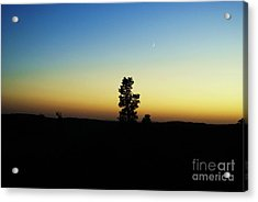 Acrylic Print featuring the photograph Chasing The Sun by Julie Clements