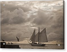 Chasing The Wind Acrylic Print