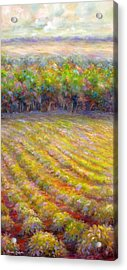 Acrylic Print featuring the painting Chateau De Berne Vineyard by Bonnie Goedecke