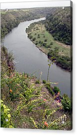Chavon River View Acrylic Print by Chris Hill