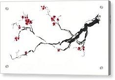 Cherry Blossom Acrylic Print by Jitka Krause