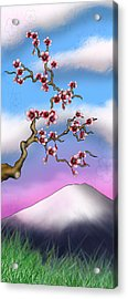 Cherry Blossoms Acrylic Print by Anthony Citro