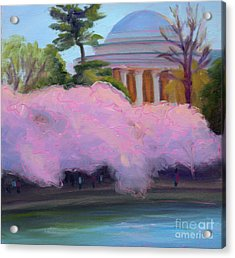 Cherry Blossoms In Afternoon Light Acrylic Print by Julie Hart