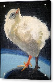 Chickie Acrylic Print by Edith Hunsberger