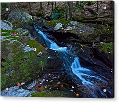 Childs Brook Summer 13 Acrylic Print by George Ramos