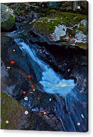 Childs Brook Summer 15 Acrylic Print by George Ramos