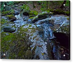 Childs Brook Summer 18 Acrylic Print by George Ramos