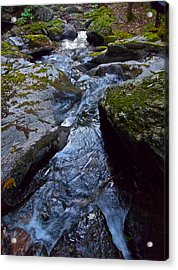 Childs Brook Summer 21 Acrylic Print by George Ramos