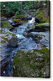 Childs Brook Summer 23 Acrylic Print by George Ramos