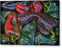 Chile Ancho Acrylic Print