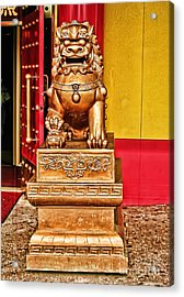 Chinese Lion Dragon-chinatown-nyc Acrylic Print by Anne Ferguson