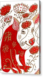 Chinese Year Of The Pig Acrylic Print