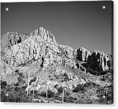 Chisos Mountain Detail Acrylic Print