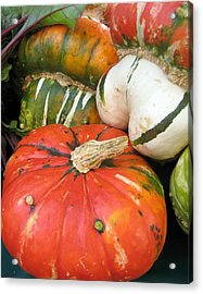 Acrylic Print featuring the photograph Choice Squash by Kathy Bassett