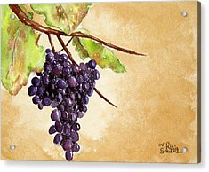 Chris' Grapes Acrylic Print