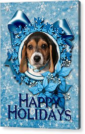 Christmas - Blue Snowflakes Beagle Puppy Acrylic Print by Renae Laughner
