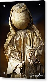 Christmas Angel Acrylic Print by Vicki Jauron