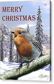 Christmas Card Red Robin Acrylic Print by Michael Greenaway