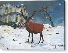 Christmas Elk Acrylic Print