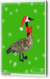 Christmas Goose Acrylic Print