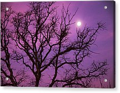 Christmas Morning Moon Acrylic Print by Jeff R Clow