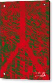Christmas Peace Acrylic Print by Robert Haigh