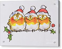 Christmas Robins Acrylic Print by Diane Matthes