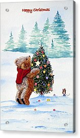 Christmas Star Acrylic Print by Gordon Lavender