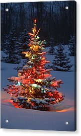 Christmas Tree With Lights Outdoors In Acrylic Print by Carson Ganci