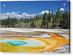 Chromatic Pool Yellowstone National Park Acrylic Print by Bruce Gourley