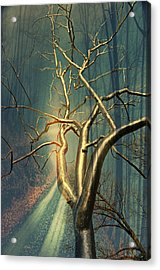 Chrome Forest Acrylic Print by Marty Koch
